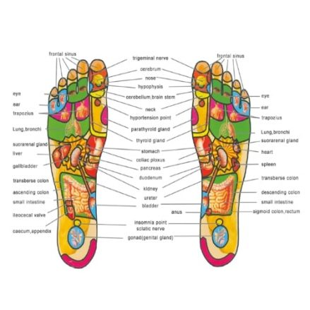 Acupressure Magnetic Therapy Shoes Insoles3